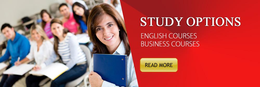 2014 sp 12 business studies 04